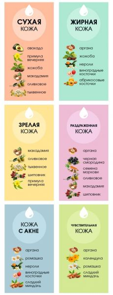 Какое масло подходит вашему типу кожи? Инфографика — Модно / Nemodno
