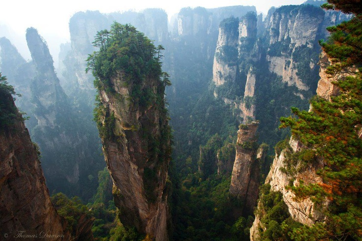 this is in china:  Drop-Off, Buckets Lists, Favorite Places, Zhangjiaji National, Forests Parks, National Parks, Wanderlust, China, National Forests