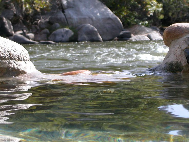 39 best images about kern river on pinterest cas for Kern river fishing spots