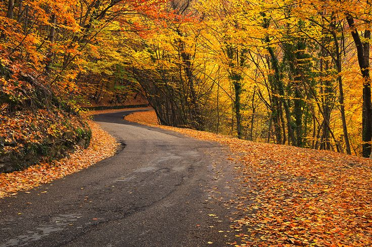 Follow these routes to take in the best of the gorgeous Hudson Valley in fall.