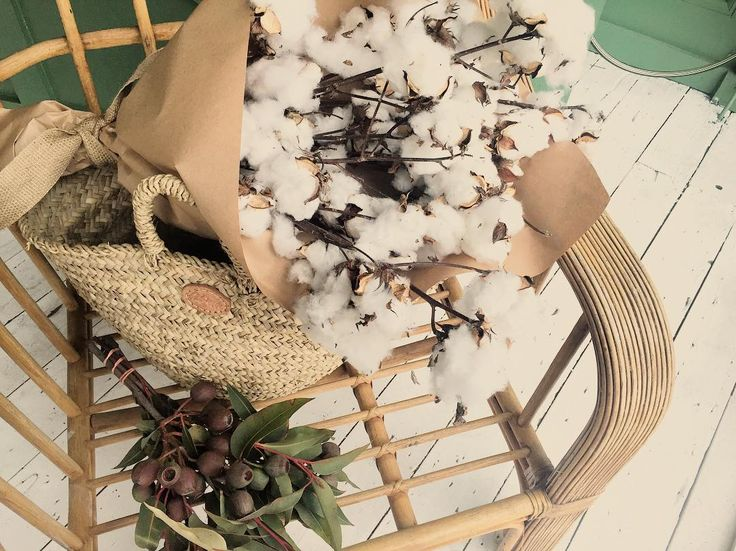 Grab a bunch of cotton in store today. Open to 5pm  #flowers #flora #shopsmall #flowersofinstagram #twigandmoss
