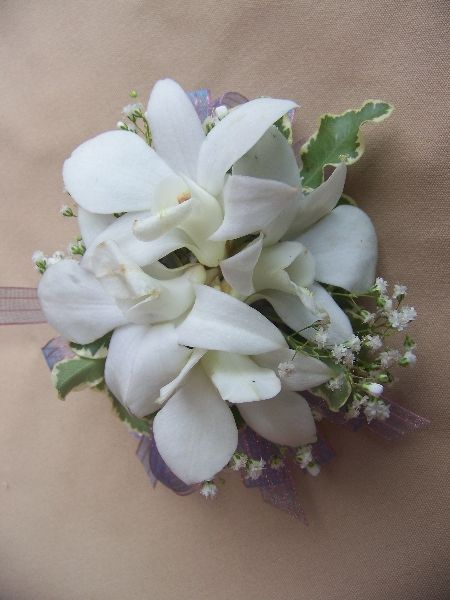 'Special Day' beaded bracelet. Shown with dendrobium orchids, gypsophila and mini pitt leaves.