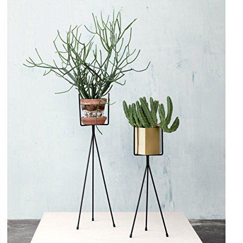 Scan Trends 4117 Blumenständer/Pflanzenständer, klein, B 13 x H: 50 cm