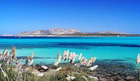 Parco Nazionale dell'isola dell'Asinara (SS)