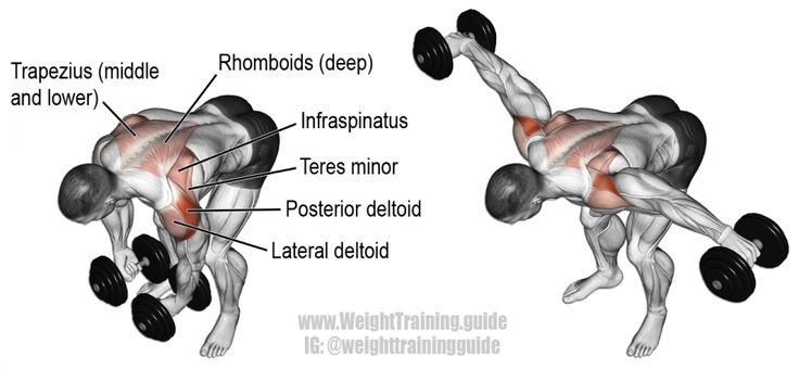 Dumbbell bent-over lateral raise exercise