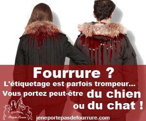 Fondation Brigitte Bardot .tous ces massacres pour des pétasses , c'est à vomir !!!!