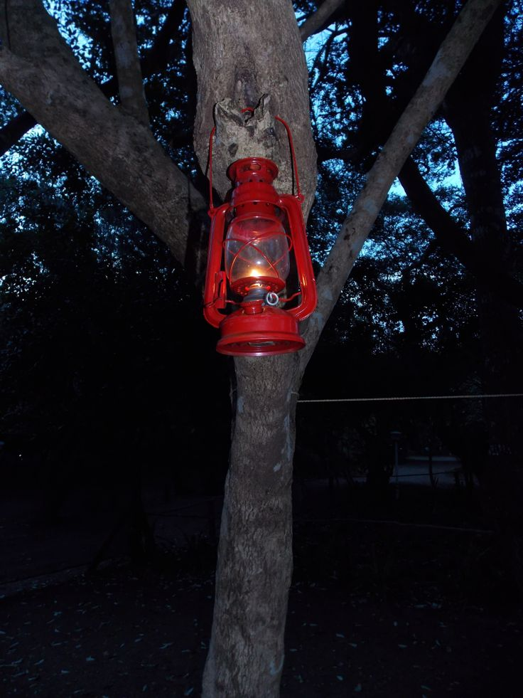 Camp light in Mozie
