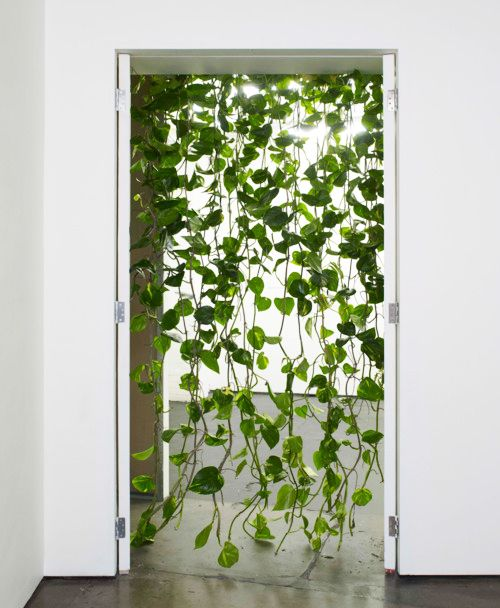 curtain: Green Doors, Doors Curtains, Hanging Plants, Future House, Beads Curtains, Green Plants, Cool Ideas, Green Curtains, Curtains Doors