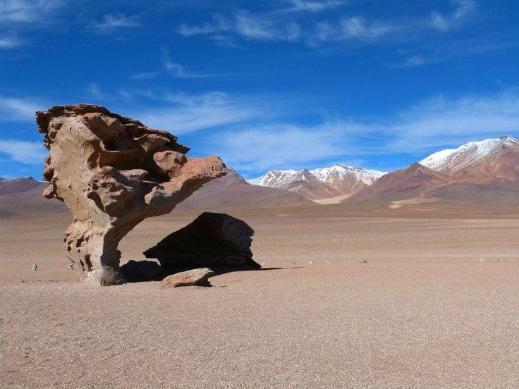 Árbol de Piedra Altiplano Boliviano