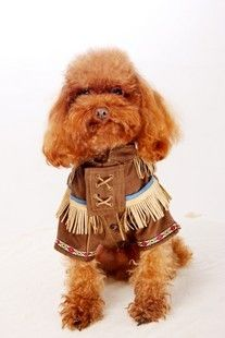 Native American Indian Pet Dog Costume - Dog Clothes, Small Dog Clothing, Dog Accessories - FREE SHIPPING WORLDWIDE