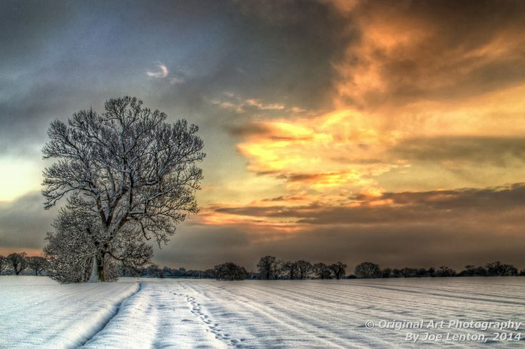 """Field of Snow - Orange Sky"" won a ""highly commended"" award in the SINWP Spectacular Landscapes competition in February 2014. It is a colour version of the award-winning monochrome ""Field of Snow"""