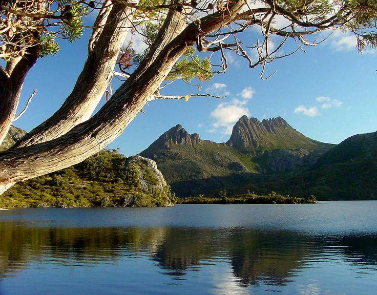 Cradle Mountain-Lake St Clair National Park...Tasmania, Australia.
