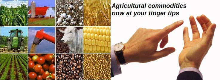 Agricultural commodities now at your finger tips with Commodity Basis. Get commodity information Futures prices for Oilseeds, Oils, Meals, Grains & much more only at Commodity Basis. To get more updates of agricultural commodity visit commoditybasis.com.