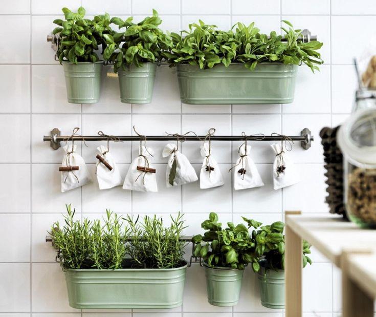donice na zioła do kuchni - Szukaj w Google