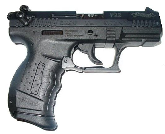 What's the Best .22 Pistol? Our Top 5 Handgun Picks for EDC & Survival | ArmsBearingCitizen.com