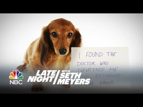 Seth Meyers Reveals The Most Extreme Dog Shaming In This Hilarious Video