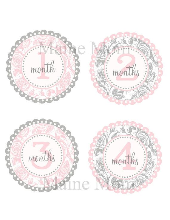 Baby Girl Monthly Stickers Baby Month Precut by MaineMomBoutique