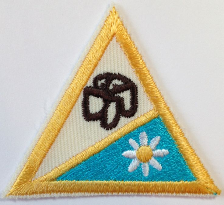 Brownie girl scout aide southwest texas have it girl