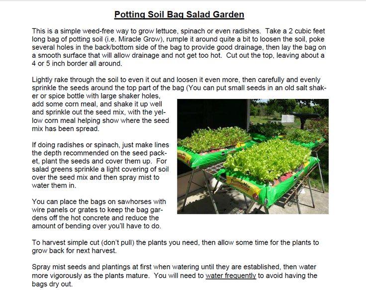 9c99f984e182d16fde2831f25965231e potting soil salad