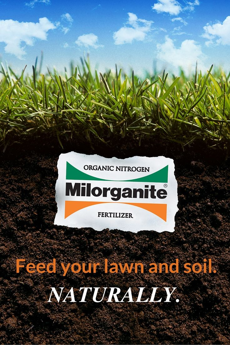 17 Best Images About Milorganite Organic Nitrogen