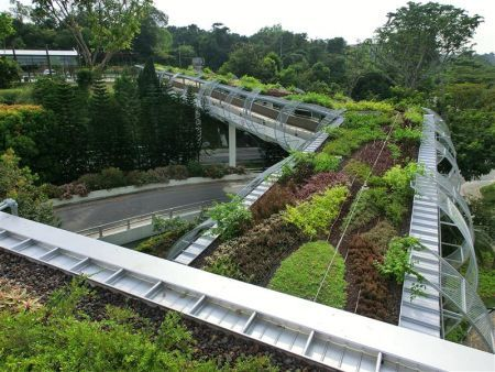 183 Best Images About Green Roof On Pinterest Gardens