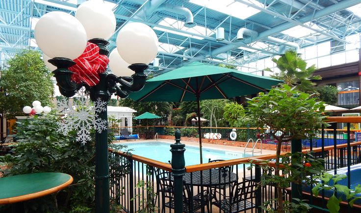 We're getting festive in our tropical courtyard! www.cairncroft.com #niagara #falls #courtyard #tropical #christmas #festive #holiday #ontario #best #western #travel #tourism #attraction #relax #visit #cairn #croft