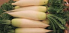 The Great Potato Imposter - Meet the Diakon. Wonderful in soups, used as hash browns, chips, etc. 5g of carbs -- 2.3 of which are fiber -- in an entire cup of daikon.