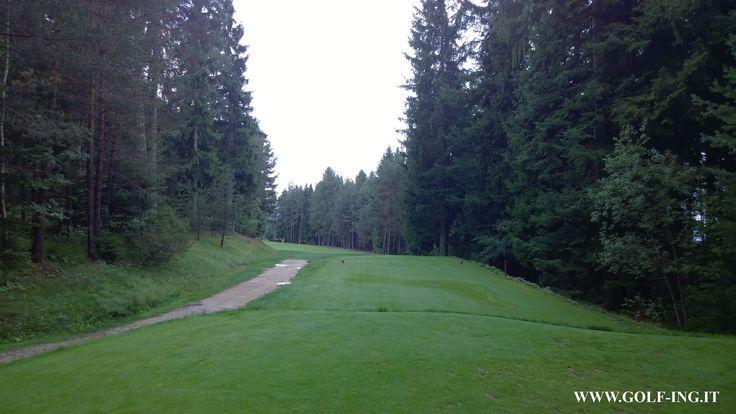 Golf Club Petersberg foresta #golfclubpetersberg