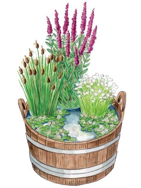Mini-Teich Garten Pinterest