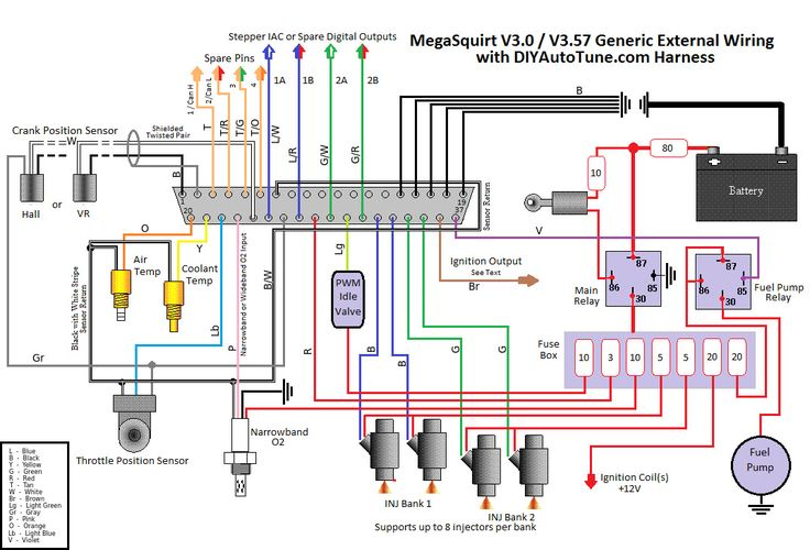 8' megasquirt wiring harness (ms1/ms2/ms3 ready) | motorcycle wiring,  automotive electrical, fuel injection  pinterest