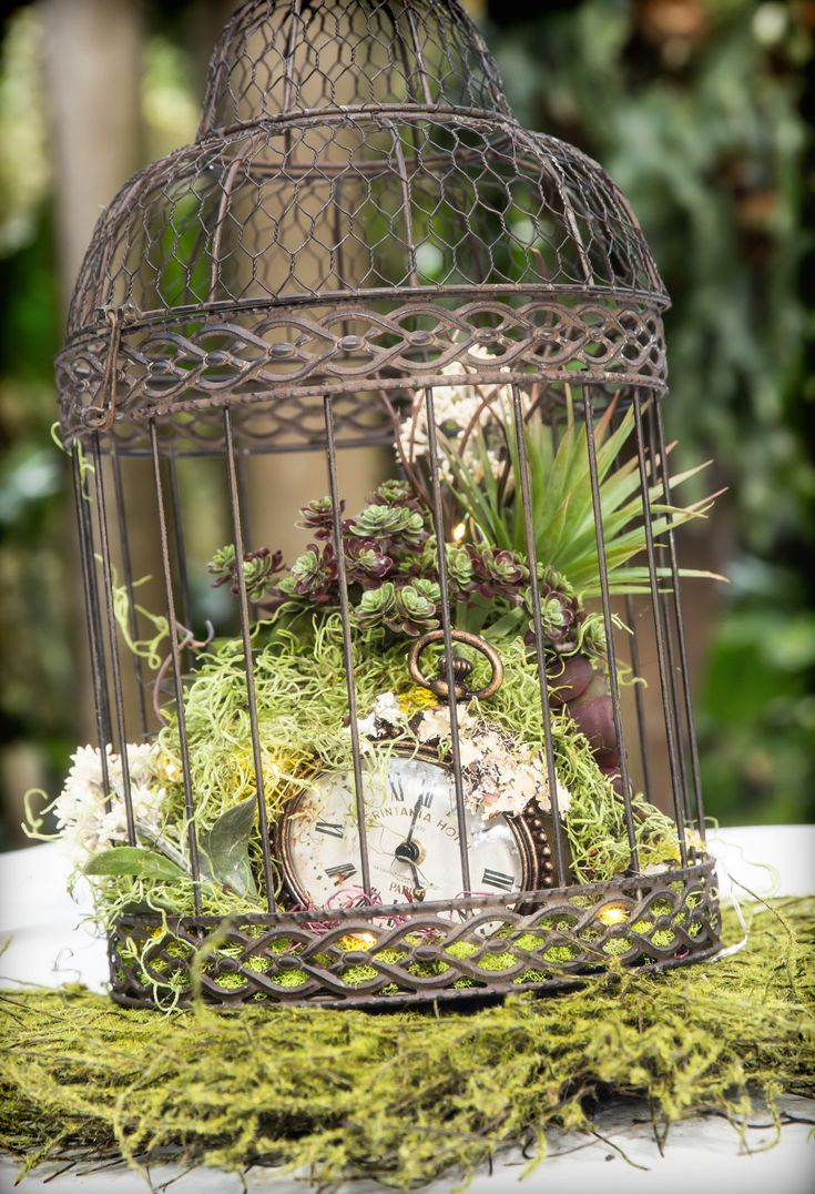 #weddingdecor #moss #birdcage #wedding #vintage #succulents #DIY #centerpiece