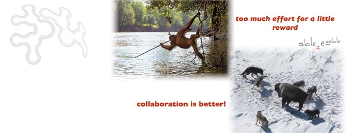 Collaboration is bettere
