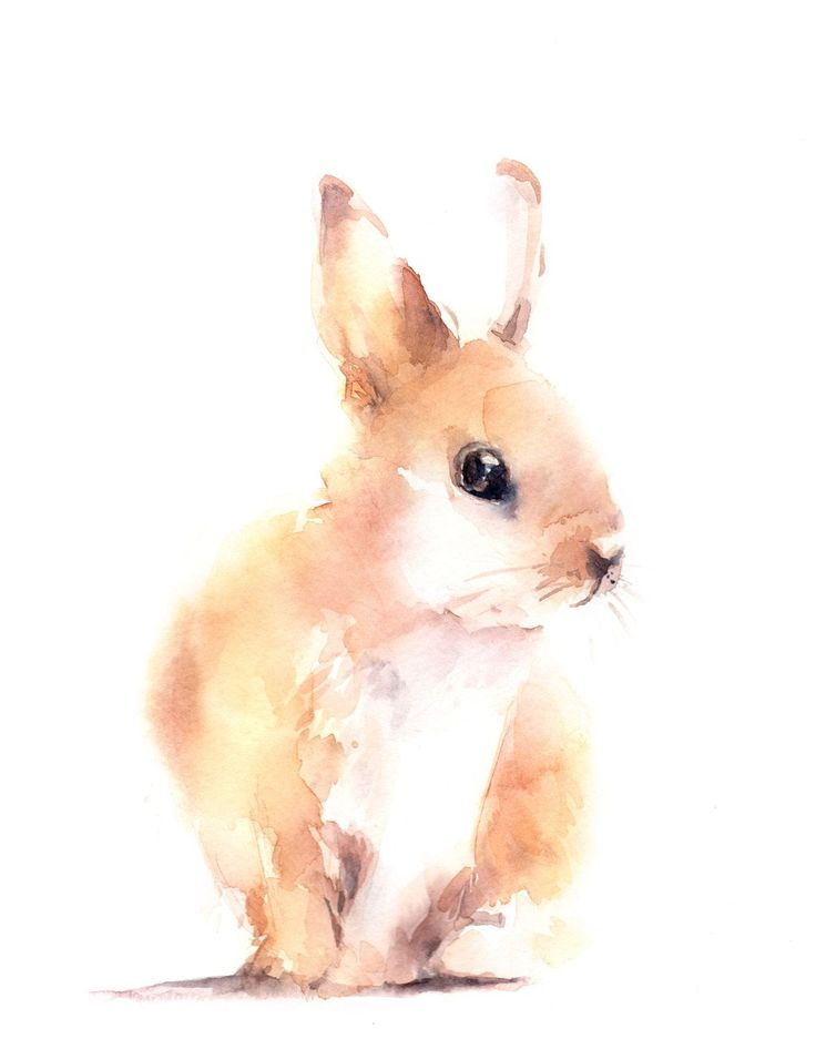 Watercolor Print Bunny Watercolor Painting Art by CanotStopPrints