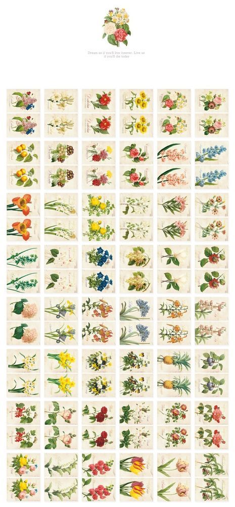 3 packs of sticker - Flower, Pattern, Vintage (96 sheet x 3 packs = 288 sheet)