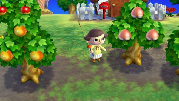 Image Result For Animal Crossing New Leaf Tree Animal Crossing New Leaf Animals