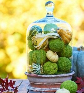 gorgeous fall decoration solutions