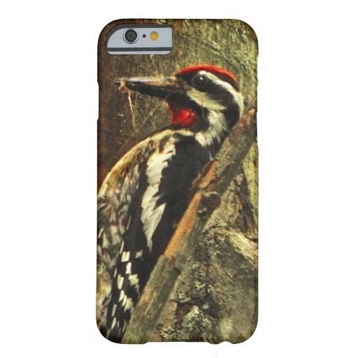 11 best cell phones images on pinterest android phone and phones yellow bellied sapsucker iphone 6 case fandeluxe Images