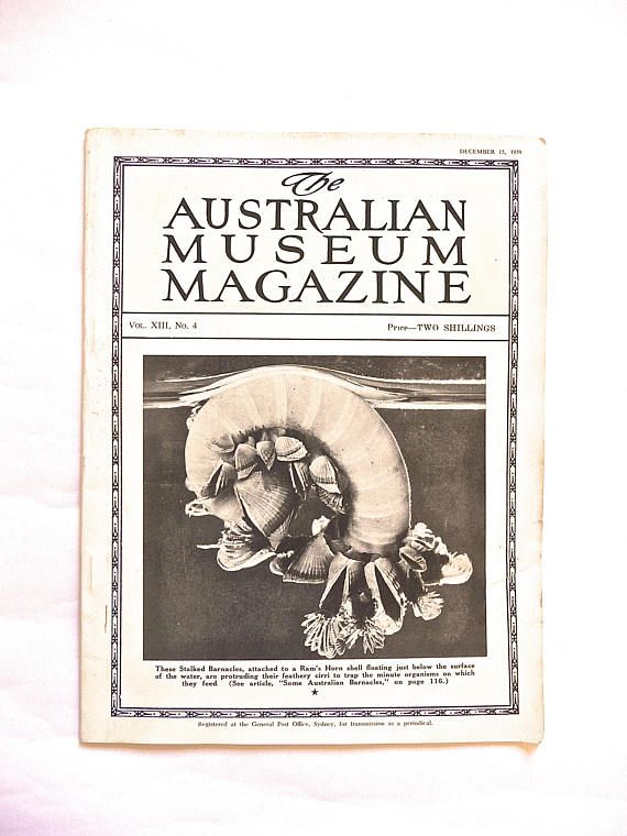 The Australian Museum Magazine VOL. XIII No 4 Vintage