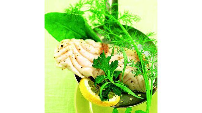 rezepte für den dampfgarer - Gedämpftes Fischfilet mit Kräutern