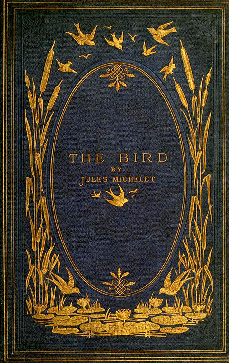 'The bird' by Jules Michelet. T. Nelson & Sons; London, 1869