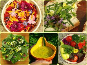 Plody permakulturní zahrady-Foto:Tomáš Svoboda