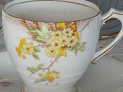 Close up photo of the pattern on this Hawthorn cup set