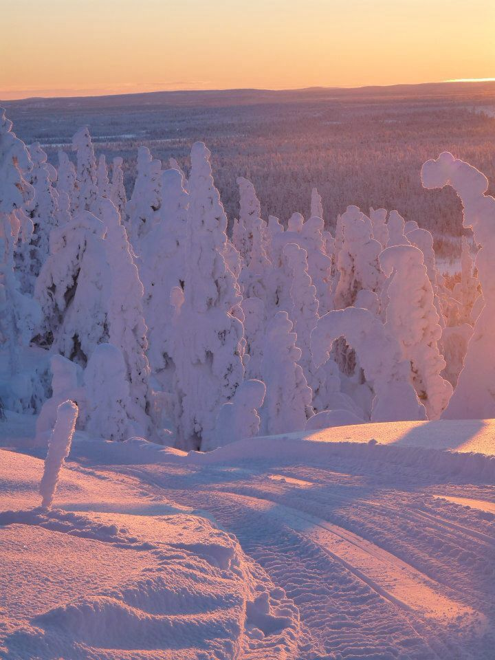 Lapland - Finland