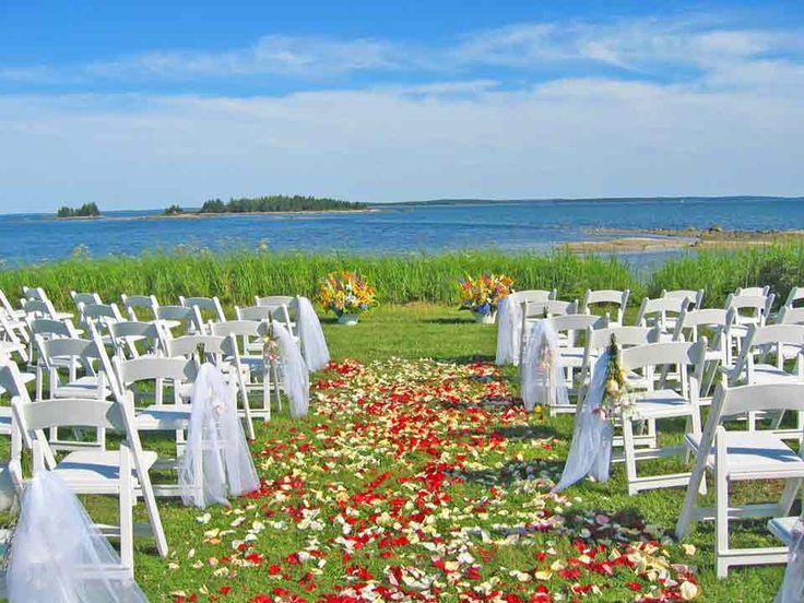 103 best Wedding aisle decor images on Pinterest | Weddings ...