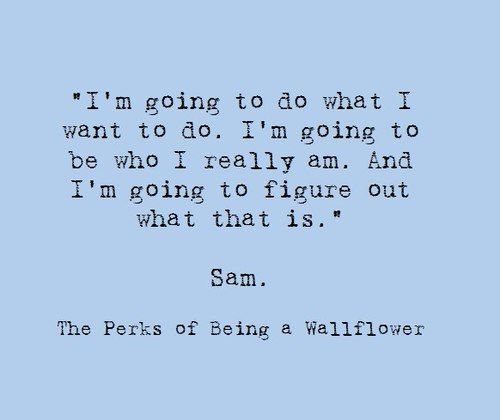 Sam-The Perks of Being a Wallflower