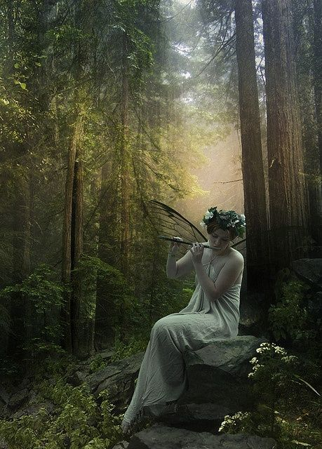≍ Nature's Fairy Nymphs ≍ magical elves, sprites, pixies and winged woodland faeries - fae woodland