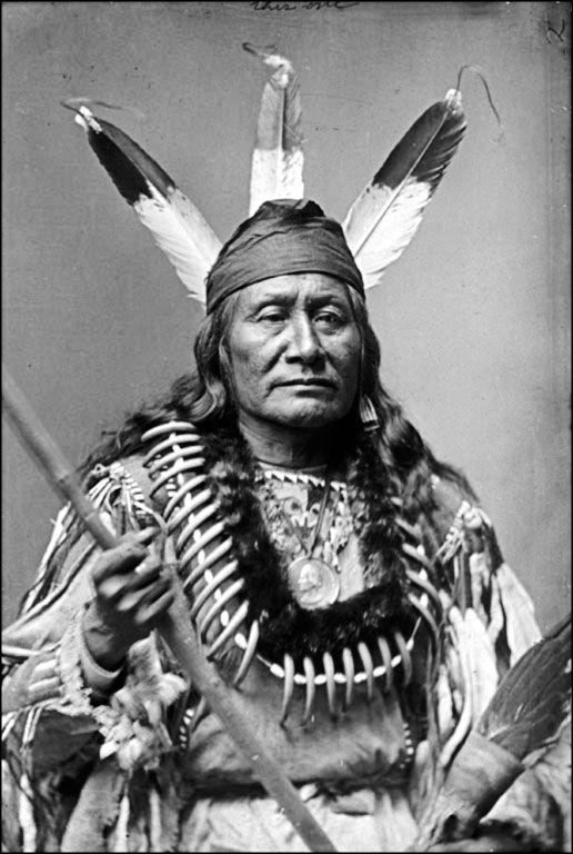Вождь племени арикара, 1880 г.