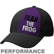 TCU hat :)