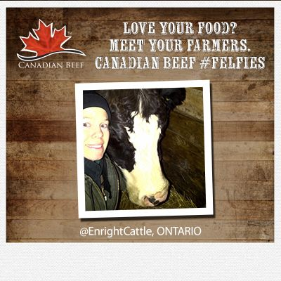 Love your food? Meet your #CanadianBeef #Farmers  #Felfie #Ontario cc @EnrightCattle