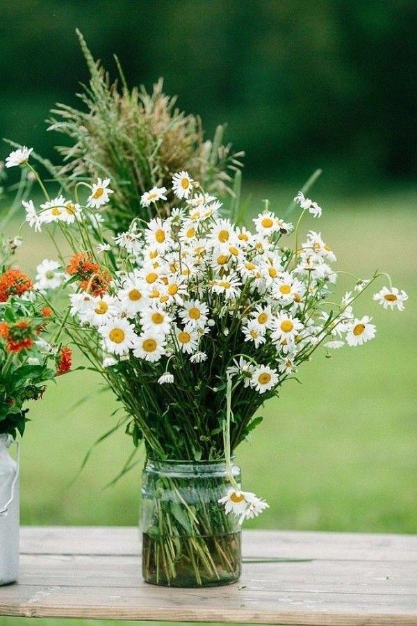 вторую букеты полевых ромашек фото красивые жена